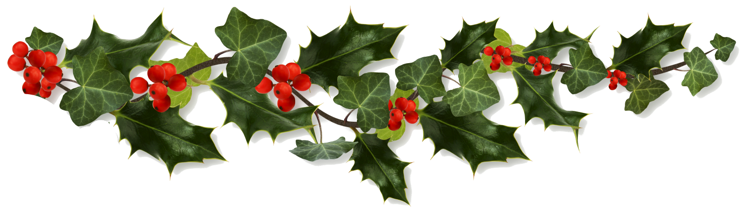 Black and white stock. Holly border png