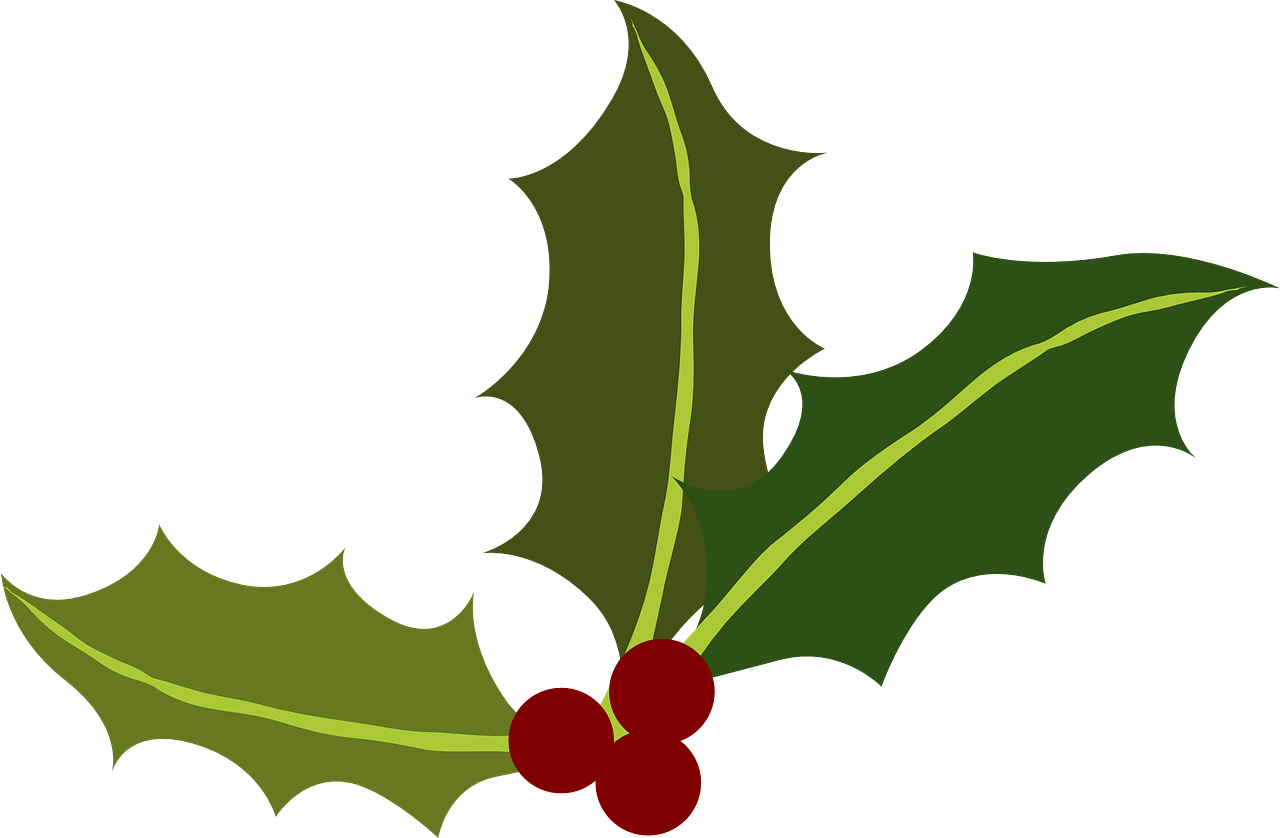 Christmas Holiday Clipart.Holly Clipart Christmas Holiday Party Holly Christmas