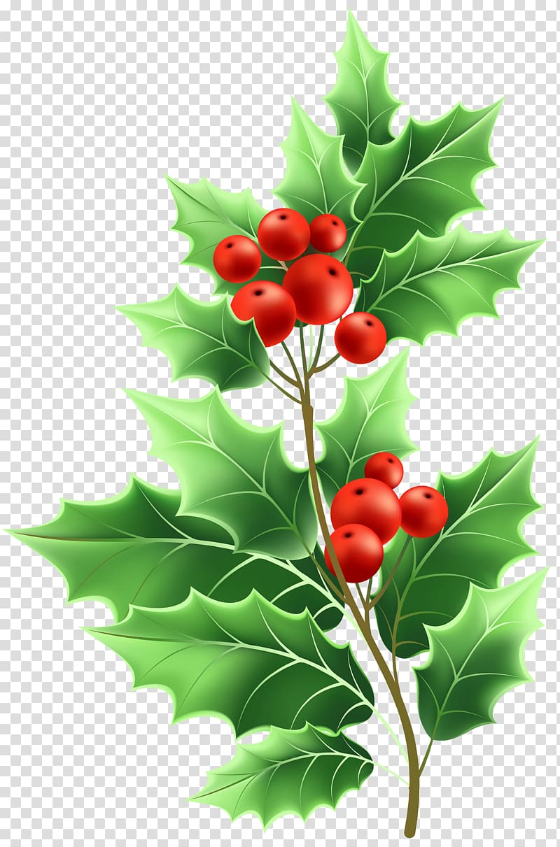 Holly clipart file. Red cherries illustration formats