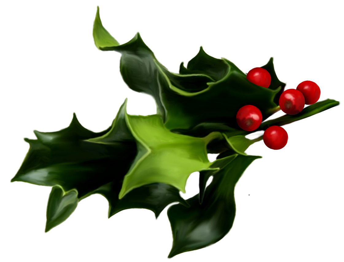 Ivy clipart holly and ivy. Png transparent images pluspng
