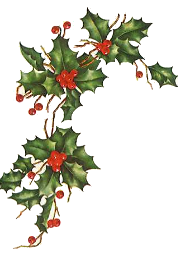 Ivy clipart holly and ivy.  days of christmas