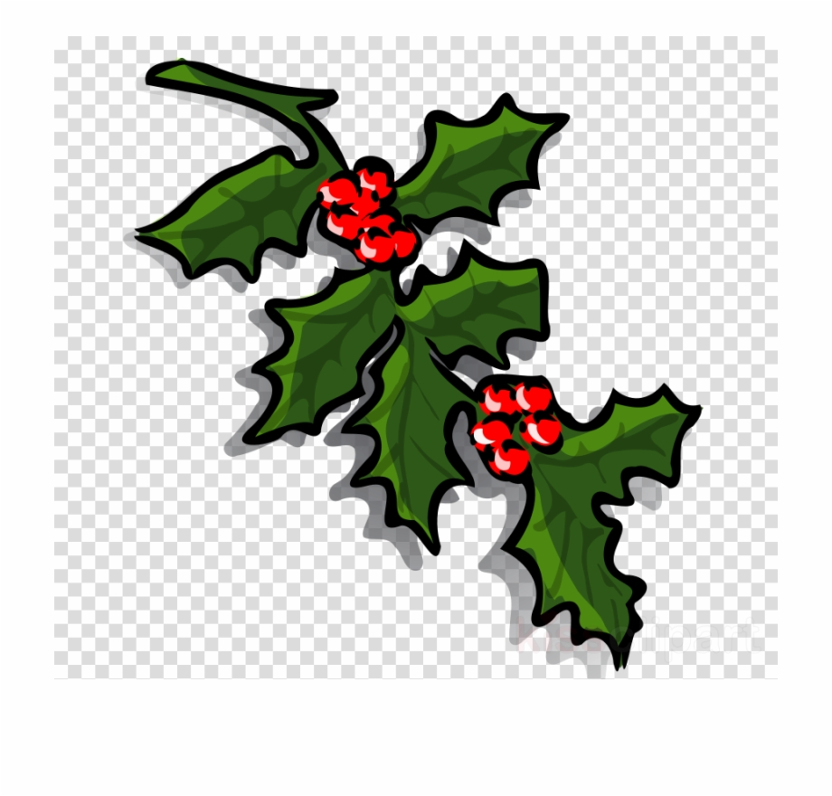 Leaf flower tree png. Holly clipart holly branch