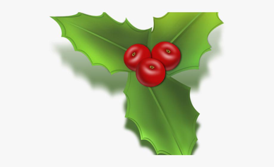 Holley leaf christmas mistletoe. Holly clipart icon