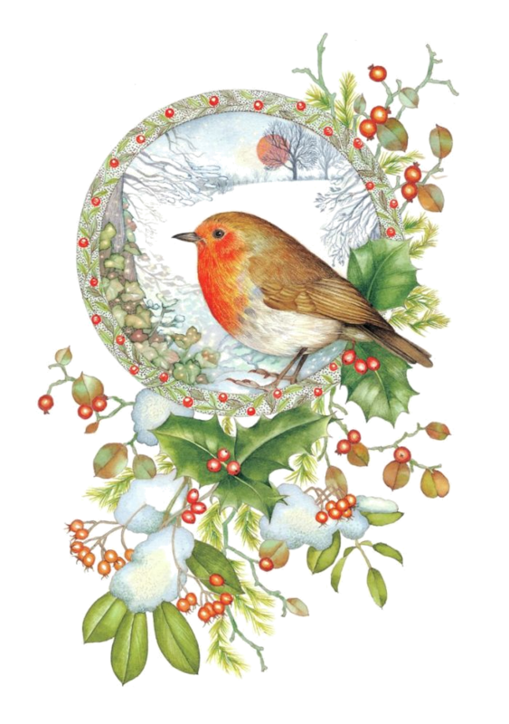 Holly Clipart Robin  Holly Robin Transparent Free For Download On Webstockreview 2020