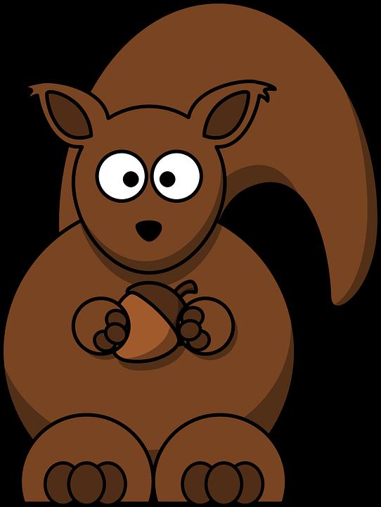 Home clipart squirrel. Image gratuite sur pixabay