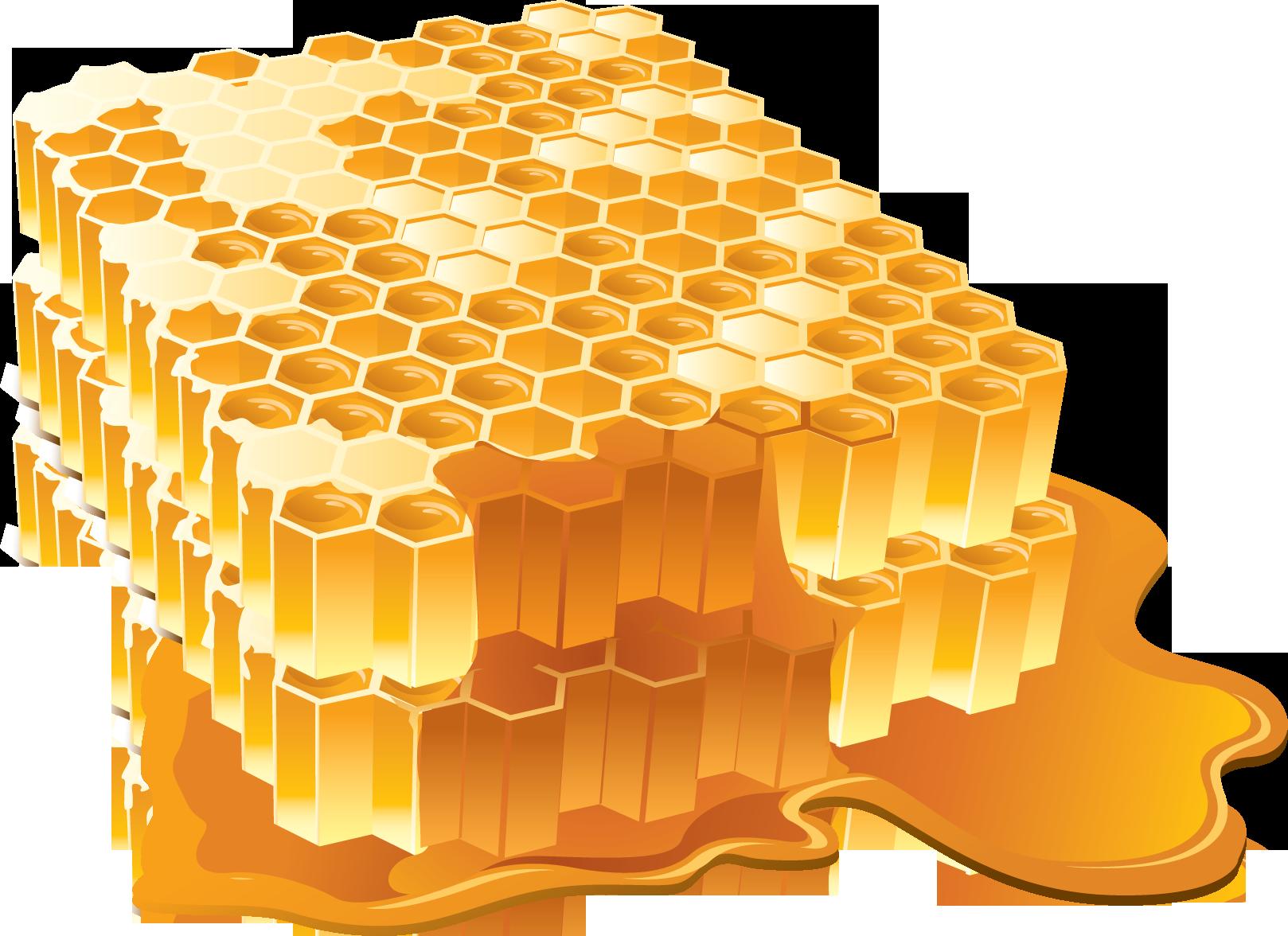 Honeycomb clipart single. Honey png image purepng