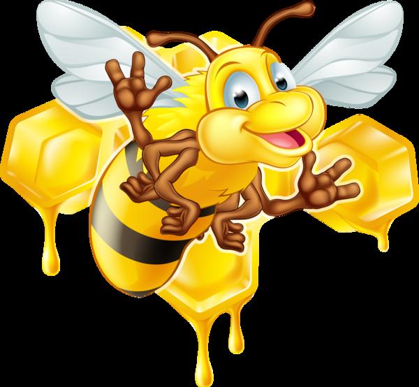 Abeilles abeja abelha png. Honeycomb clipart bee pollination