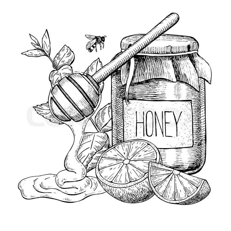 Pot at paintingvalley com. Honey clipart sketch