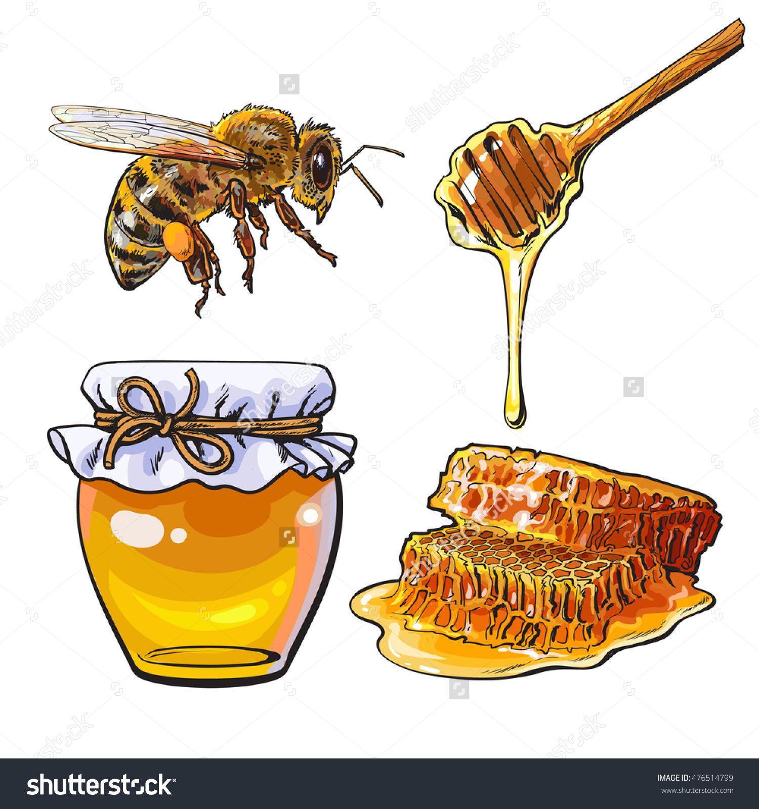 Honey clipart sketch. Jar of bee dipper