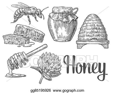 Vector art set jars. Honey clipart sketch