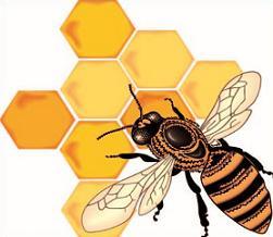 Free. Honeycomb clipart