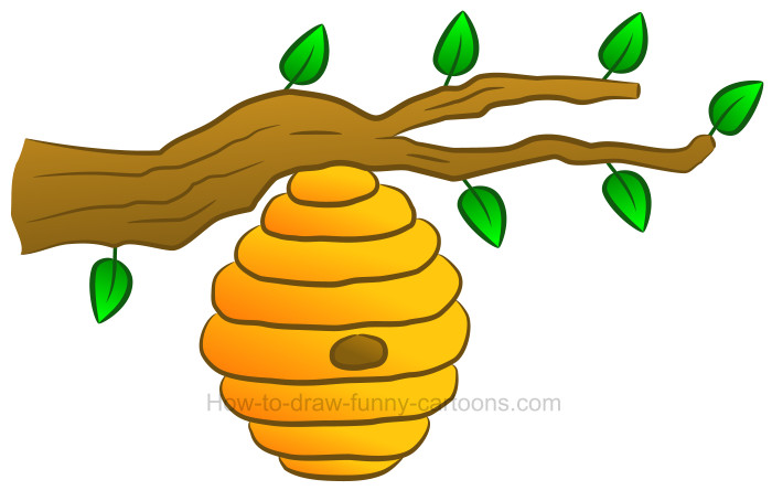 Honeycomb clipart animated. How to draw a