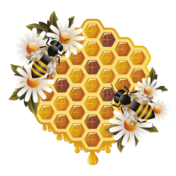 Fly me to the. Honeycomb clipart bee pollination