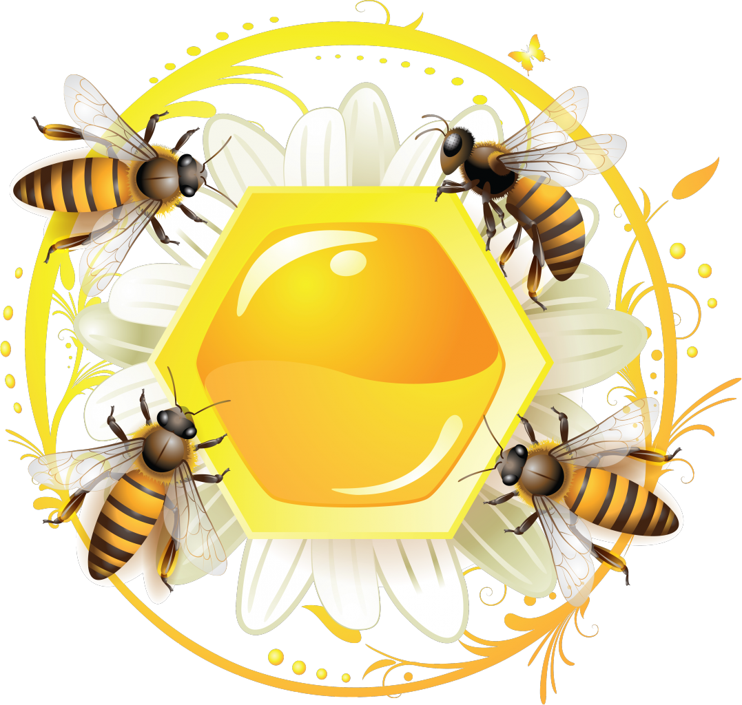 Honeycomb clipart bee pollination.  png pinterest crafts