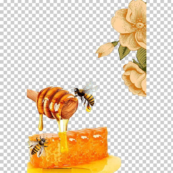Honey bee png beehive. Honeycomb clipart beeswax