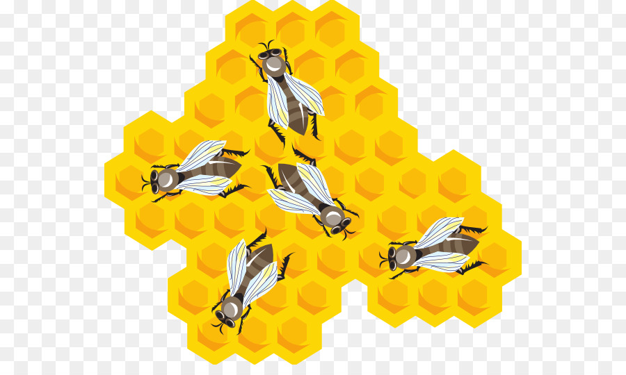 Honeycomb clipart beeswax. Bee cartoon beehive transparent