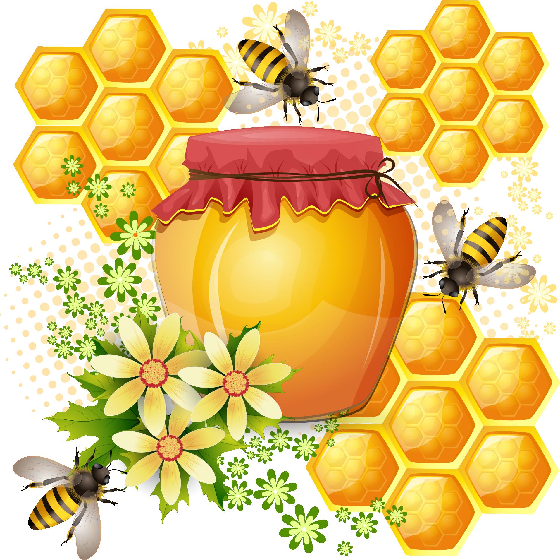 Western honey bee bees. Honeycomb clipart beeswax