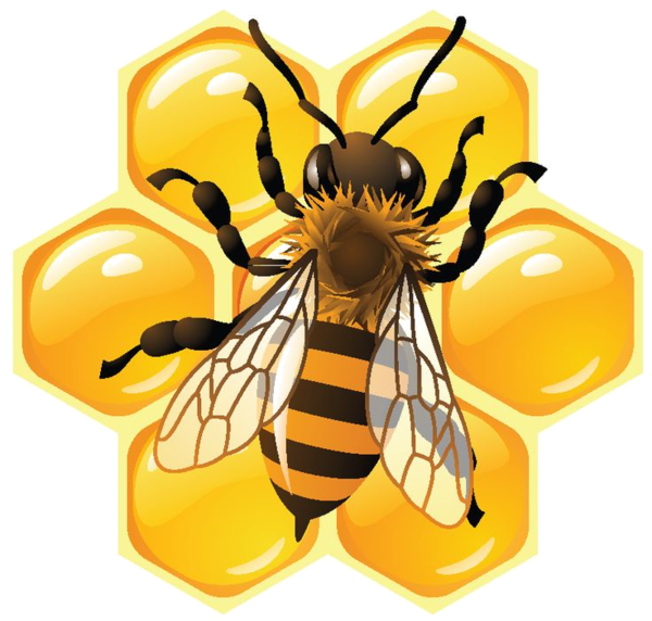 Pin by carmen dungan. Honeycomb clipart honey drip