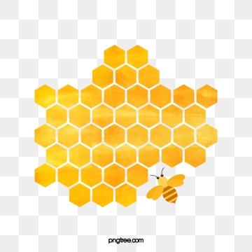 Honeycomb clipart honeycomb design. Png vector psd and