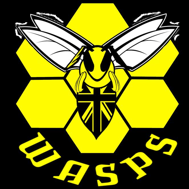 London wasps tomanaki logos. Honeycomb clipart hornet nest