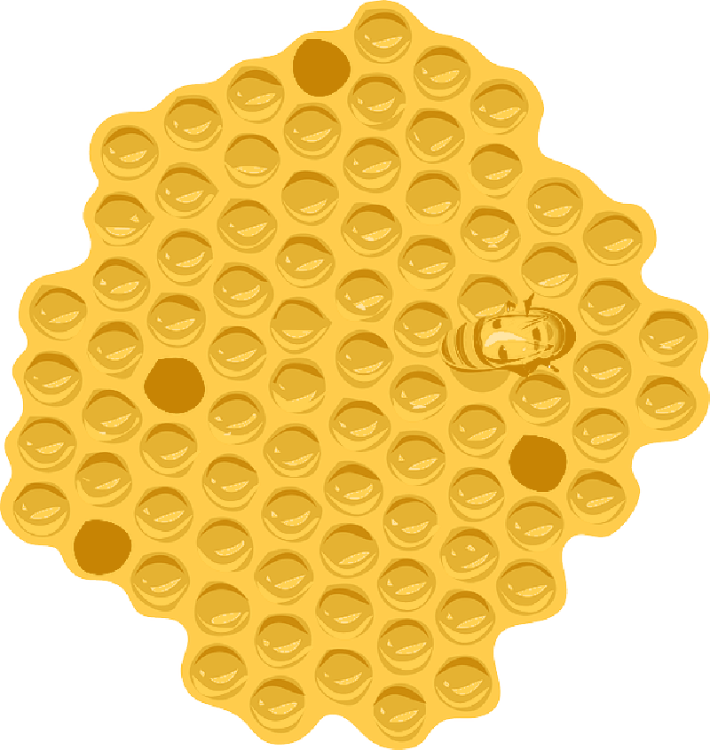 Honeycomb clipart hornet nest. Free pictures hive images