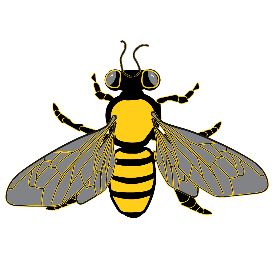 Honeycomb clipart outline. Bee graphic from package