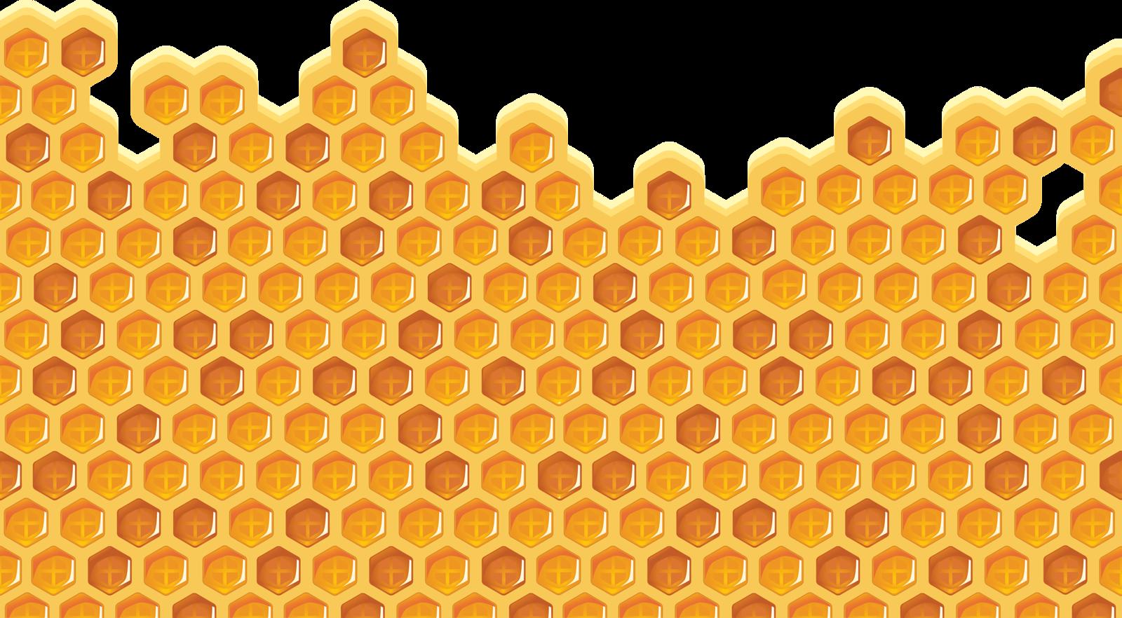 Honeycomb clipart single. Shutterstock png pinterest bees