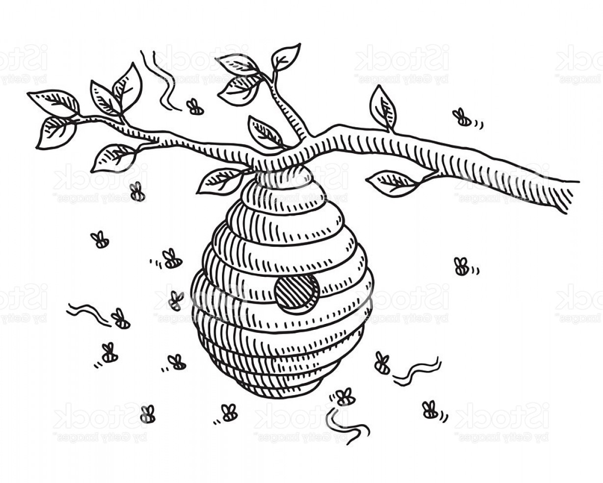 Hive at paintingvalley com. Honeycomb clipart tree drawing