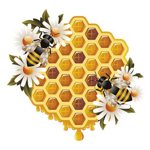 Honeycomb clipart vintage. Free and bees illustration