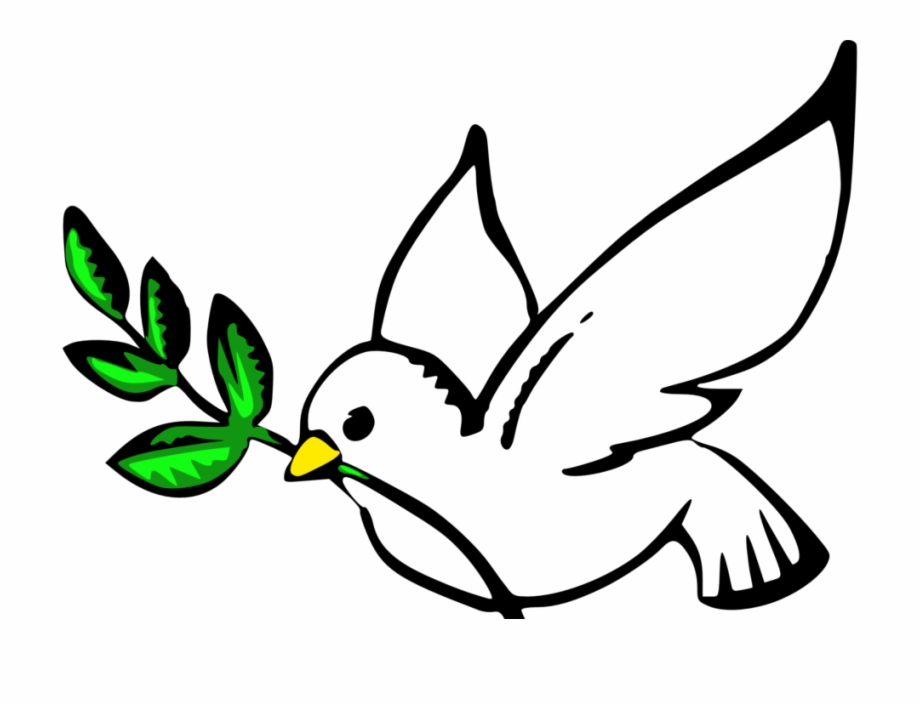 Dove with transparent background. Doves clipart hope