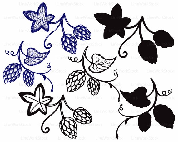 Svg beer plant silhouette. Hops clipart