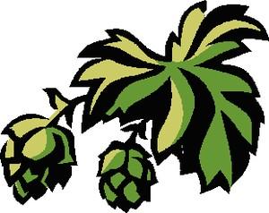 Hops clipart. Beer vine