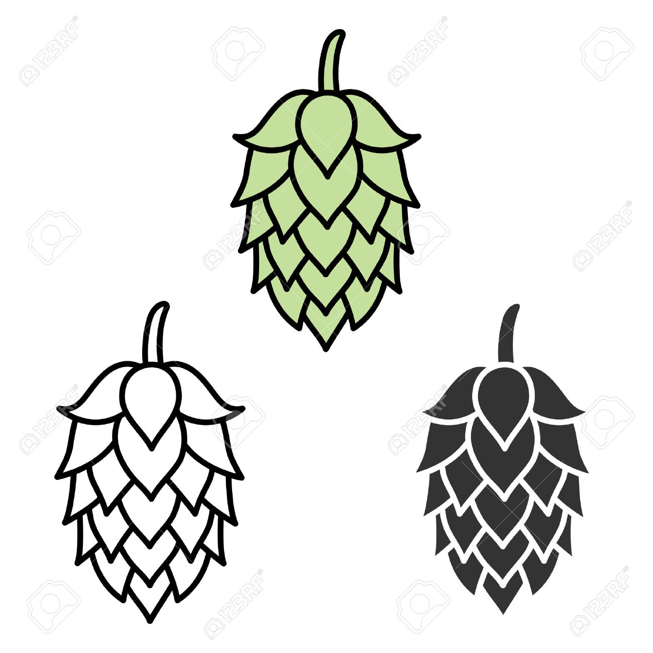 Hops clipart. Free for download on