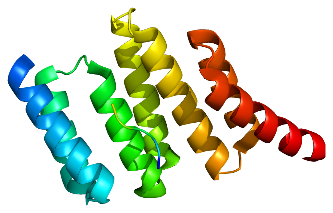 Protein wikipedia . Hops clipart animal hop