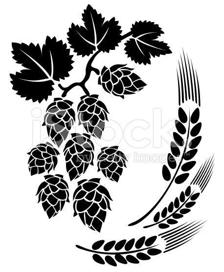 Stylized hop and ears. Hops clipart beer ingredient