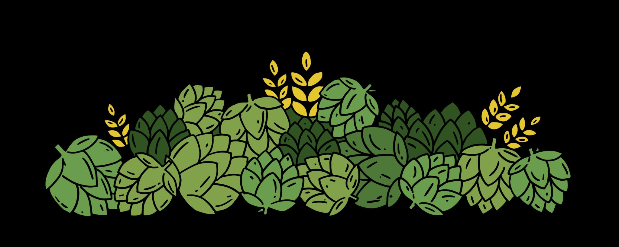 Hops clipart beer ingredient. How we boar waterloo