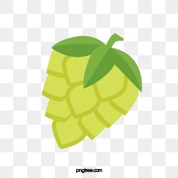 Hops clipart transparent background. Hop png vector psd