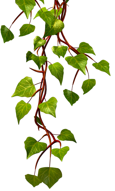 Hops clipart vine. Win in the lucky
