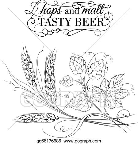 Hops clipart wheat. Vector stock golden and