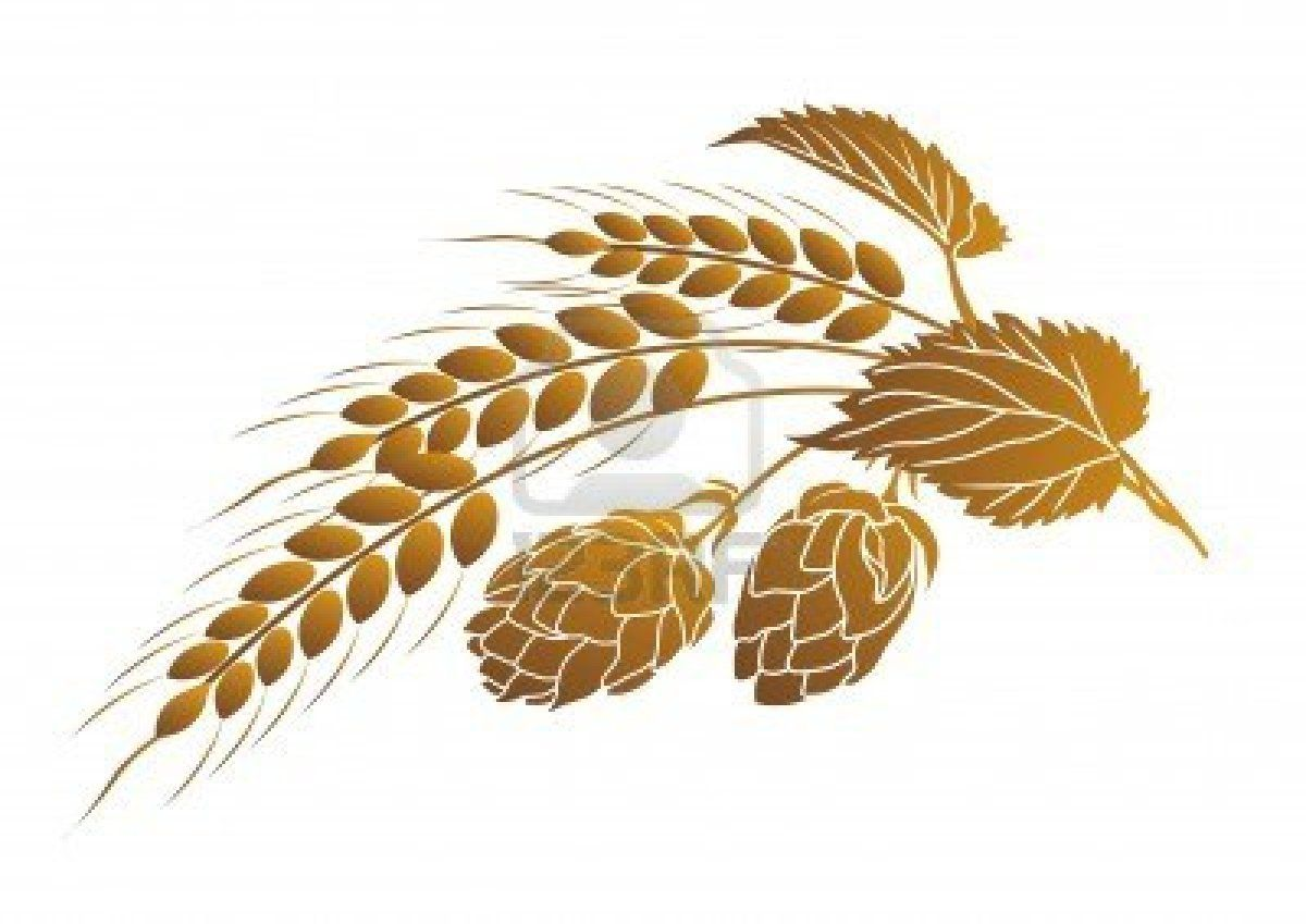 Pin on art images. Wheat clipart hop