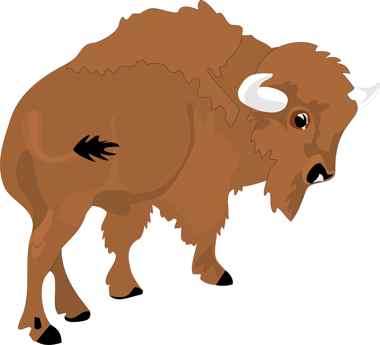 Bison view large horns. Horn clipart animal horn