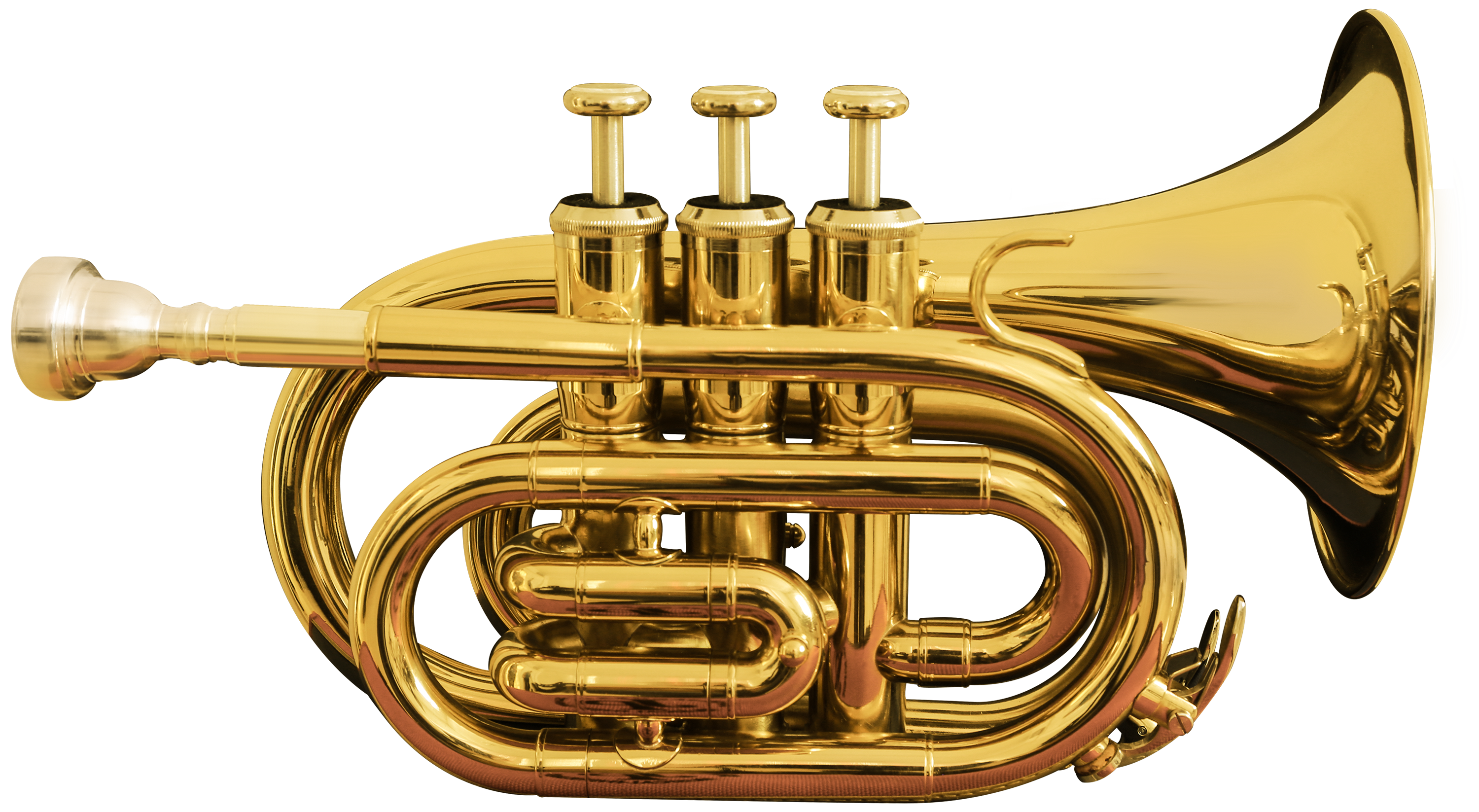 Pocket trumpet transparent clip. Instruments clipart tuba