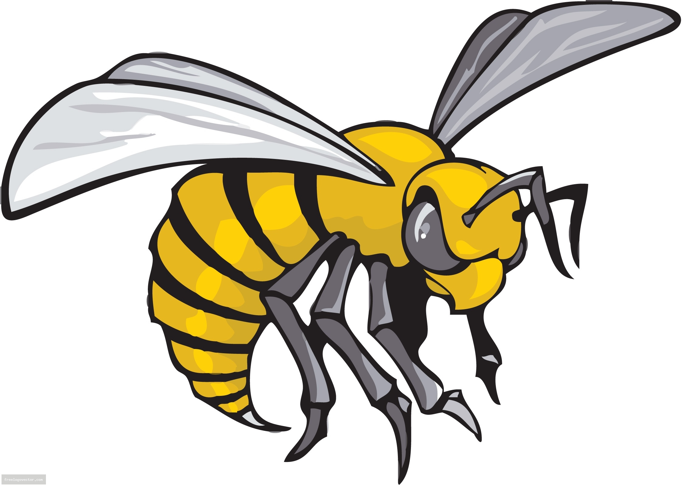 Unique design digital collection. Hornet clipart