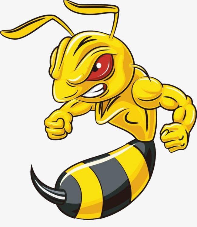 Png . Hornet clipart angry hornet