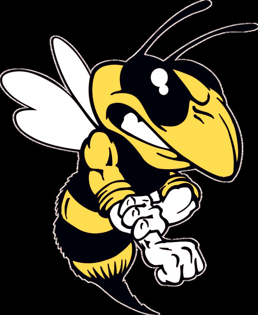 Hornet clipart angry hornet. Tuesday gfys