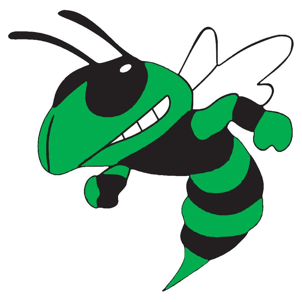 Hornet clipart angry hornet. The lake hornets scorestream