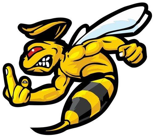Hornet clipart angry hornet. Images free download best