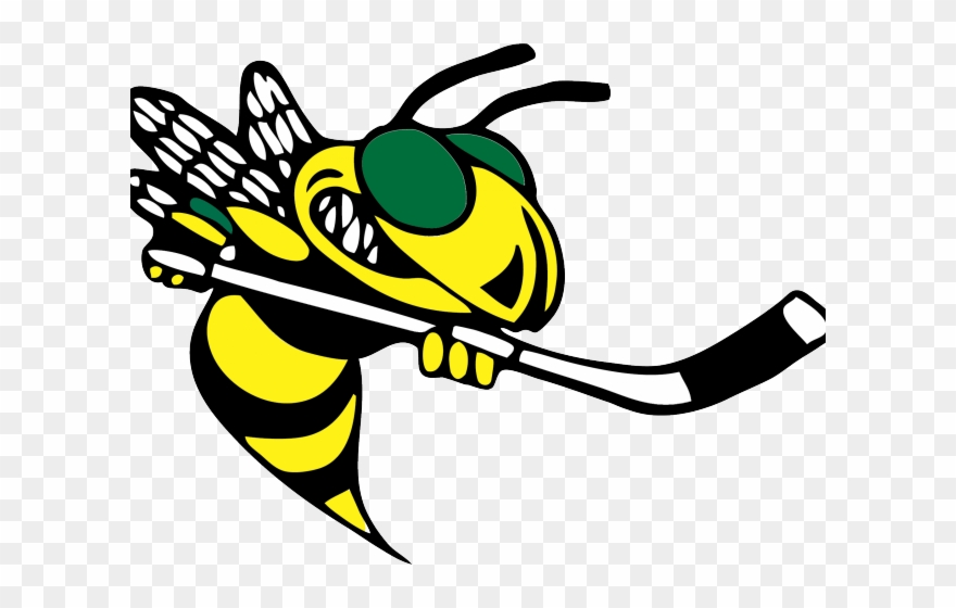Hornet clipart buzzy. Baker hornets png download