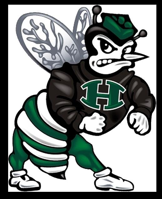 Hornet clipart buzzy. Huntsville team home hornets