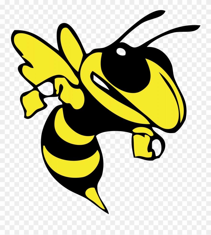 Baby harpursville hornets png. Hornet clipart buzzy